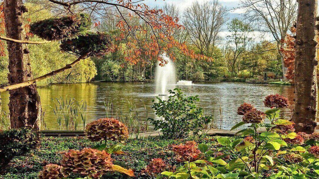 Ejemplo de paisajismo urbano y jardinería