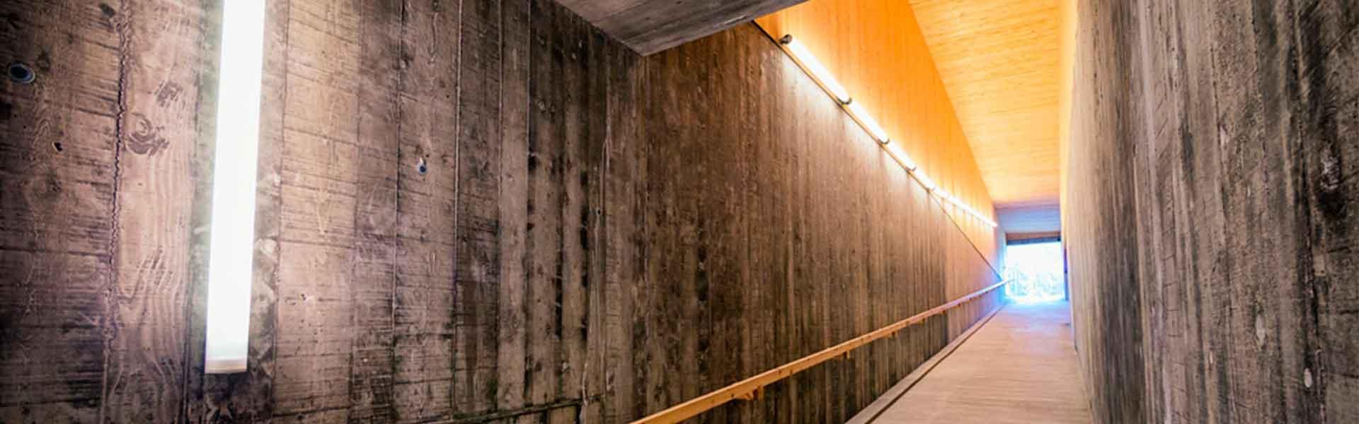 Programa de actualización en Iluminación - Facultad de Arquitectura
