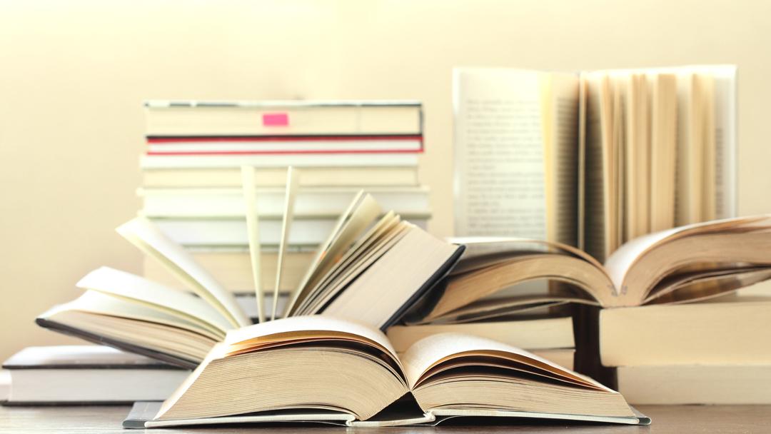 Publicaciones del cuerpo académico de la facultad